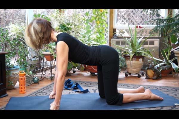 Free Yoga Class Online